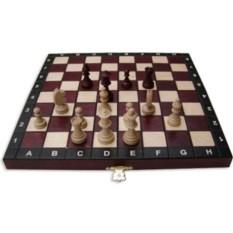 Шахматы Магнит