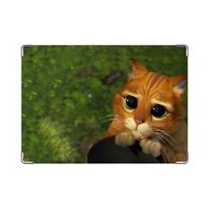 Обложка на паспорт Взгляд кота