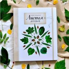Книга-гербарий «Мой гербарий. Листья деревьев