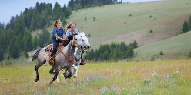 Катание на лошадях в Подмосковье, 1,5 часа, дети (выходные дни)
