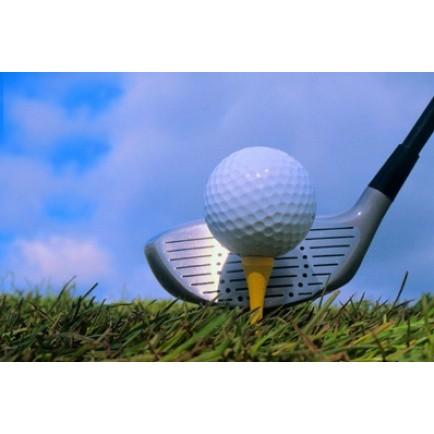 Подарочный сертификат Мини-гольф для двоих