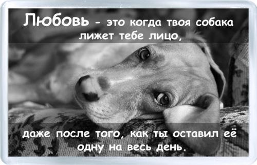 Магнитный подарок: Серия любовь это...про собак