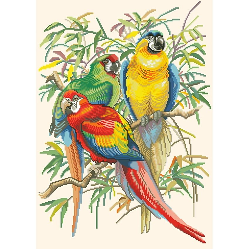 Вышивка крестом два попугая 100