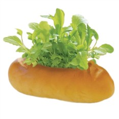 Набор для выращивания салата Green Bread Багет