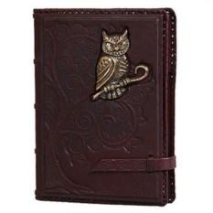 Ежедневник Мудрость с фигуркой совы