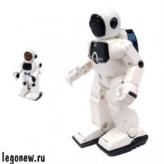 Робот Programme-a-bot с функцией программирования