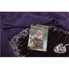 Обложка для паспорта / автодокументов Милая снежная обезьянка