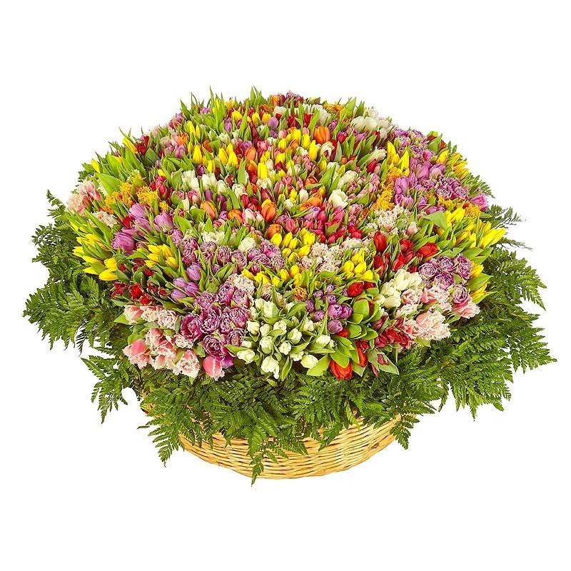 Корзина 1001 тюльпан