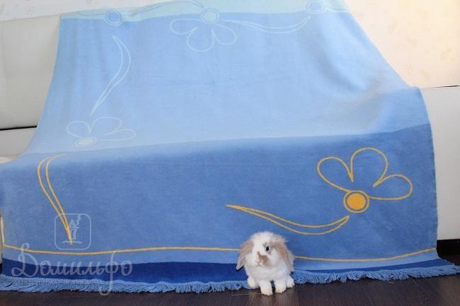 Плед Ромашка, голубой, 180х220