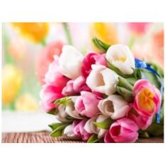 Картины по номерам «Нежные тюльпаны»