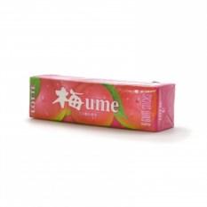 Жвачка LOTTE Японская слива