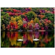 Картины по номерам «Осеннее озеро»