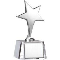 Серебряная стелла Звезда