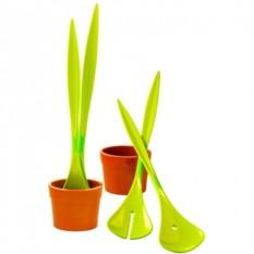 Набор для салата Салатное растение