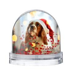 Водяной шар Рождество