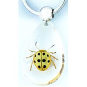 Брелок «Мир насекомых»