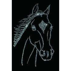 Картина из кристаллов «Голова лошади»