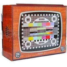 Картонный телевизор Юдифь-17
