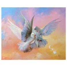 Картина-раскраска на холсте по номерам Голубки