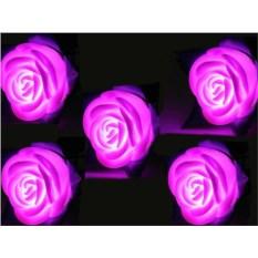 Светящиеся в темноте розы