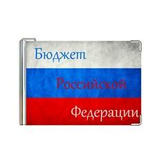 Кожаный зажим для денег Бюджет РФ