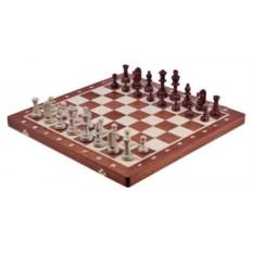 Шахматы Турнир