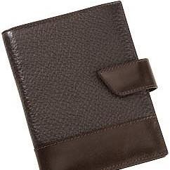 Бумажник водителя с кошельком ALVARO, коричневый