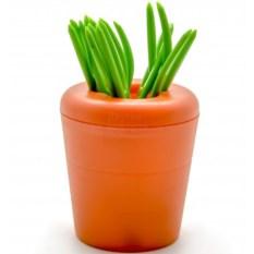 Шпажки Морковка