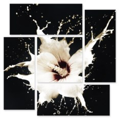 Модульная картина Белый цветок