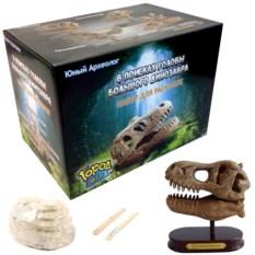 Археологический набор «Голова большого динозавра»