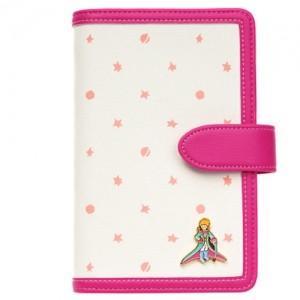Дневник Le Petit  Prince