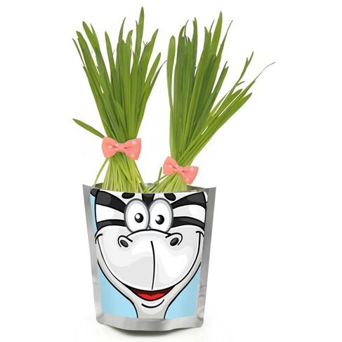 Happy Plant Сафари Зебра