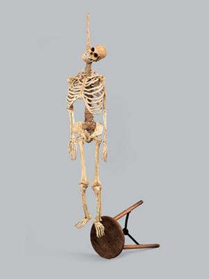 Скелет повешенный