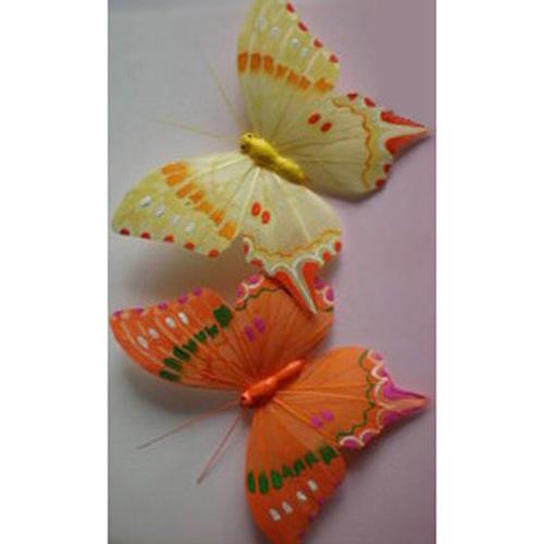 Бабочка на прищепке, 6 видов