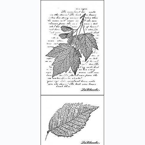 Набор их 2-х штампов Листья