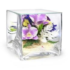 Композиция из натуральных орхидей в квадратной вазе