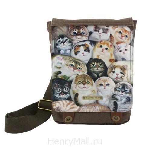 Женский планшет «Кошки Генри»