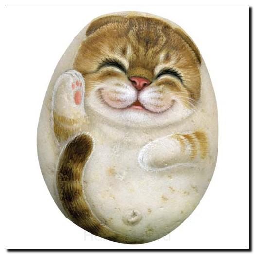 Камень Кошка Белла, Водолей