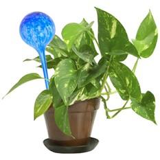 Автополив комнатных растений «Aqua»