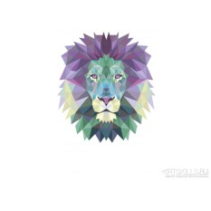 Женская футболка Lion