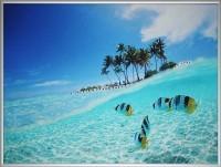 Картина Swarovski Мальдивы