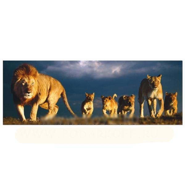 Пазл «Семья львов»