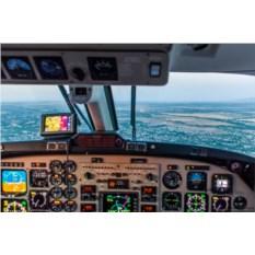 Виртуальное пилотирование (30 минут)