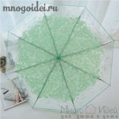 Зонт прозрачный Мятные лепестки счастья