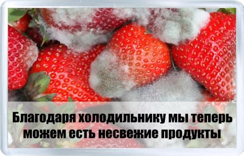 Магнитный подарок: Спасибо холодильнику