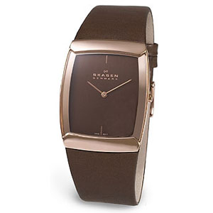 Мужские наручные часы Skagen Swiss