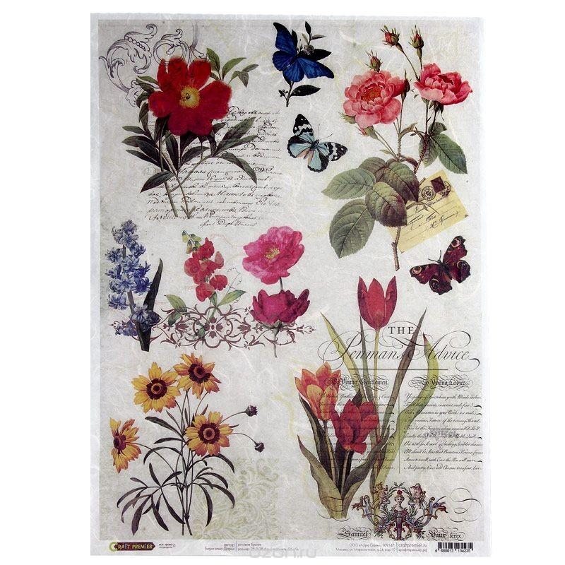 Рисовая бумага для декупажа Craft Premier Ботаника