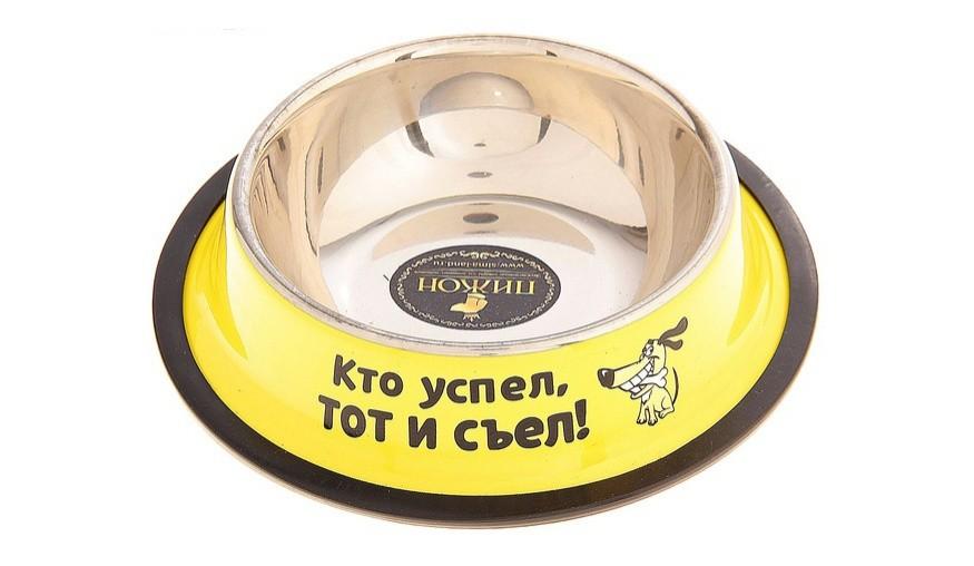 Миска для собак Кто успел, тот и съел