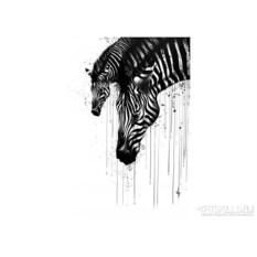 Женская футболка Zebra