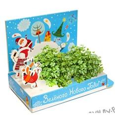 Подарочный набор Зеленого Нового года